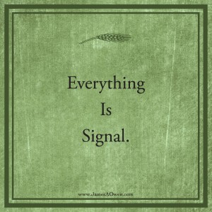 TBDmeditation signal 300x300 What is Signal?